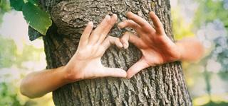 PRIMAGAS - Klimaliebe - Nachhaltigkeit - Natur, Baum, Herz